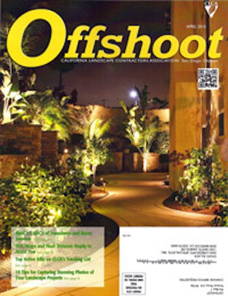 offshoot-mag-cover